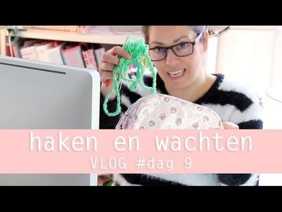 Vloggen loopt uit de hand, over haken en wachten 100 days of yarn bombing day 9