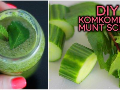 DIY ❤ Munt komkommer scrub | Beautygloss