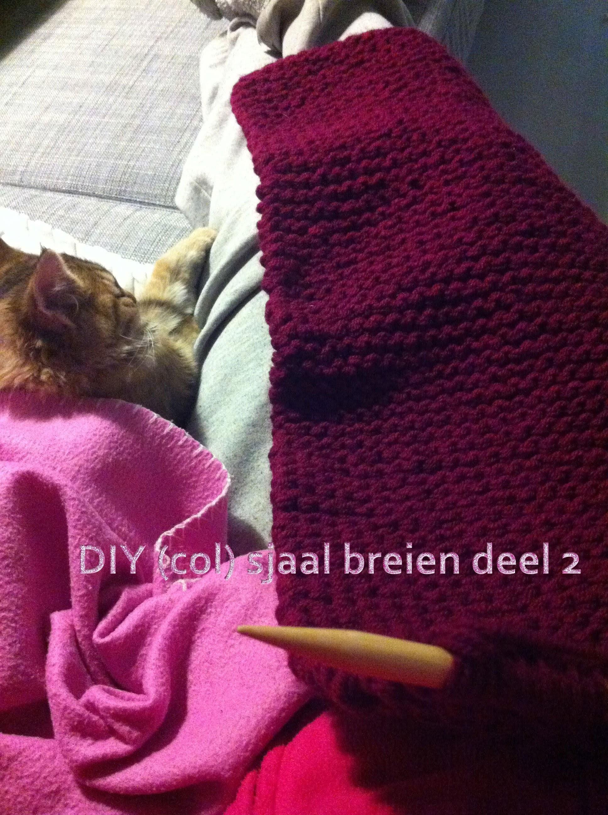 DIY (col) sjaal breien deel 2