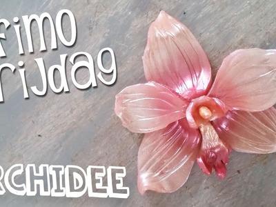 Fimo Vrijdag #8 ORCHIDEE van fimo Diy Nederlands