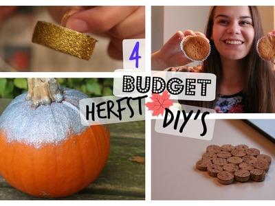 BUDGET Herfst DIY 2015 | Snel & gemakkelijk!