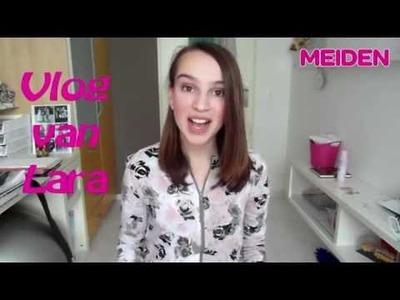 Vlog van Lara: DIY sieraden houder