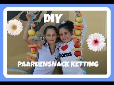 DIY PAARDENSNACK SLINGER