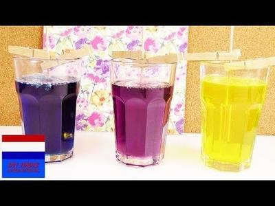 DIY zelf snoep maken UPDATE | Deel 3 DIY suikerkristallolly's | kleurige kandij