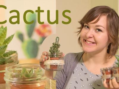 DIY - Cactus potjes! - Home Decoratie