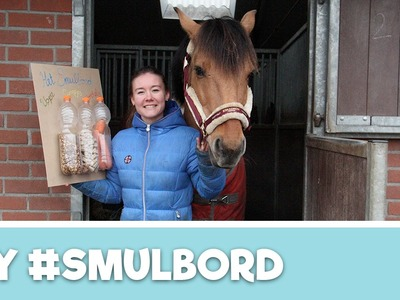 Felinehoi maakt Paarden Snoepjesbord | DIY | Penny TV