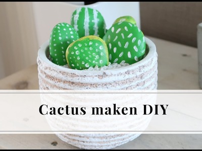 Cactus maken met stenen DIY | Furnlovers