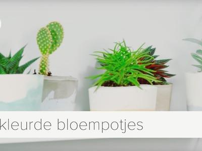 Gekleurde bloempotjes van gips | diy | vtwonen