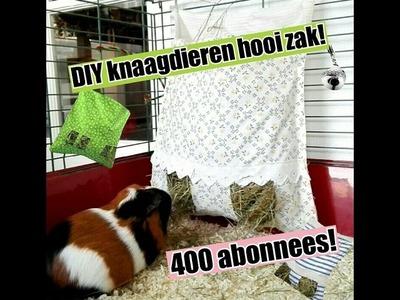 Hooizak DIY 400 abonnees special!!