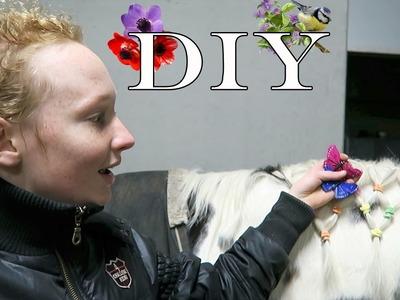 DIY MATJES VLECHTEN | LENTE | Paardrijden met Plezier