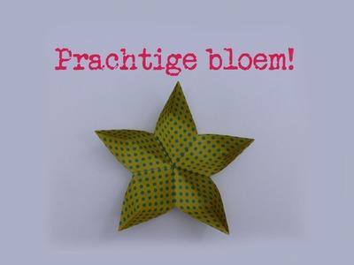 Mooie Sakura bloem - makkelijke uitleg! - vouw instructie - origami - simpel en eenvoudig